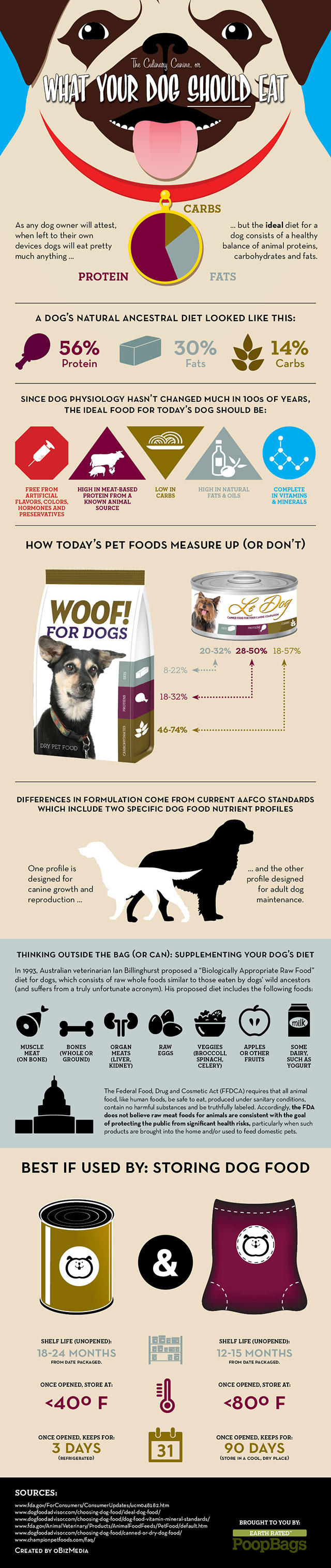 Infographic | What Dogs Should Eat, Too Bad Sydney Cant Read what your dog shoul eat small featured dog nutrition dog food  infographic dog nutrition 
